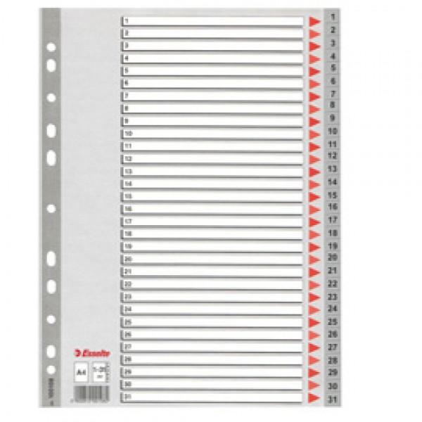 Rubriche numeriche in PPL Esselte - 31 tasti - 100108