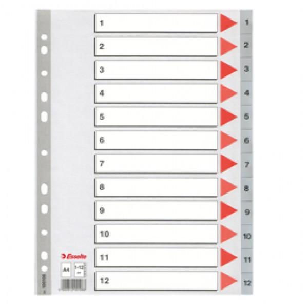 Rubriche numeriche in PPL Esselte - 12 tasti - 100106