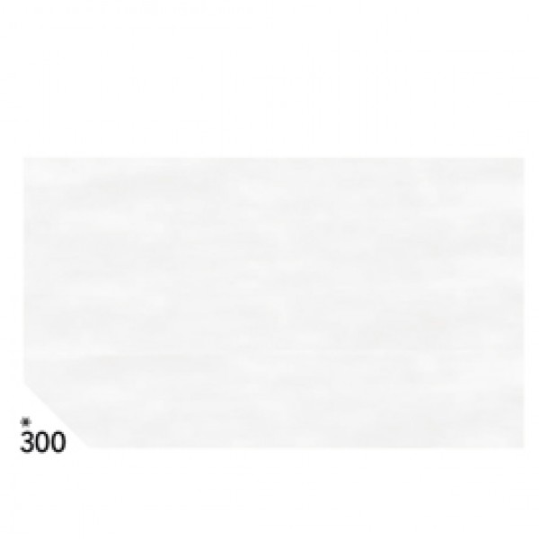 Carta velina -  50x70cm - 31gr - bianco 300 - Rex Sadoch - busta 26 pezzi