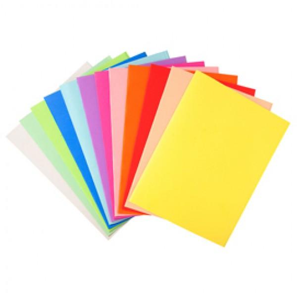 Cartelline semplici Forever® - 220 gr - 24x32 cm - mix 5 colori - Exacompta - conf. 100 pezzi