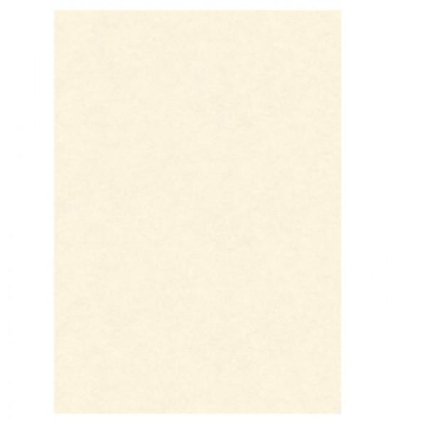 BLISTER 10 DIPLOMI PERGAMENA 210x297mm 160gr neutro avorio KARTOS