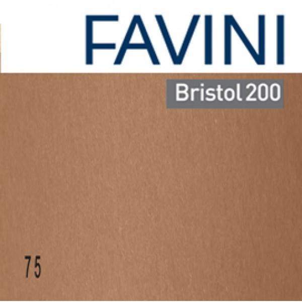 Conf.25 cartoncino Bristol Color 200gr 50x70cm marrone 75 Favini - A358022