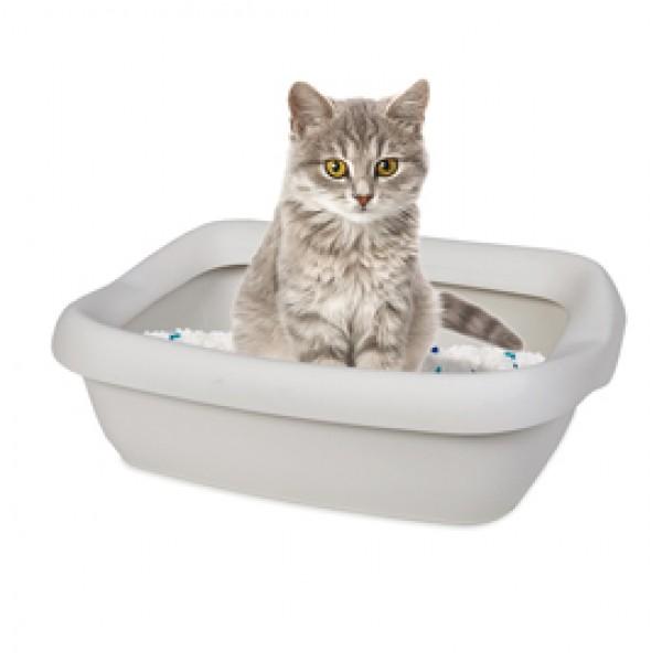 Toilette con cornice grande per gatti - Vitakraft