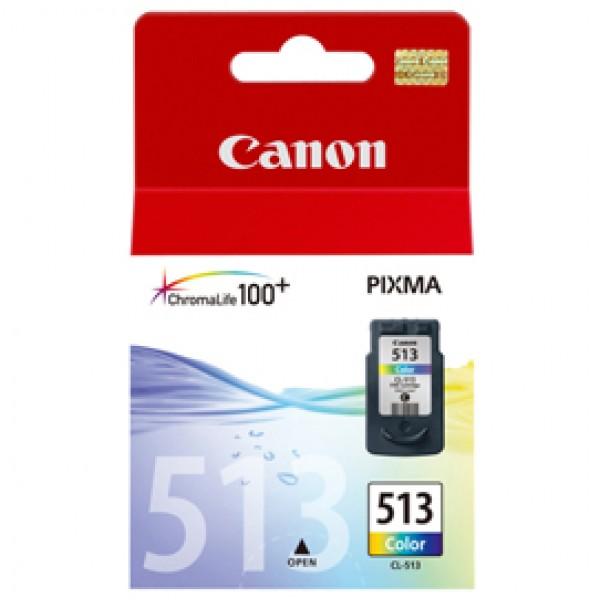 Originale Canon 2971B001 Cartuccia inkjet alta resa Chromalife 100+ CL-513 colore - 2971B001